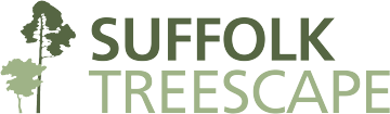 Suffolk Treescape Tree Surgeons Arboriculture Services